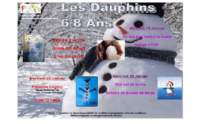 Programme dauphins janvier